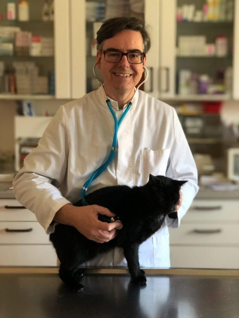Tierarzt Notdienst Hund Katze Heimtier Haustier Kleintier