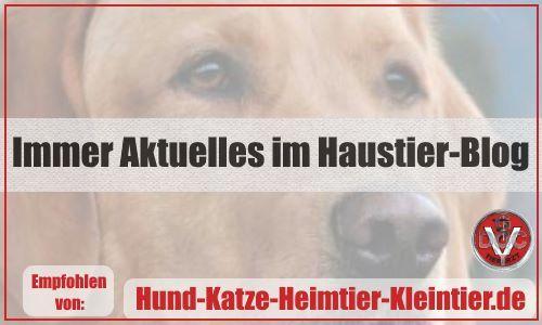 Blog Hund-Katze-Heimtier-Kleintier,de