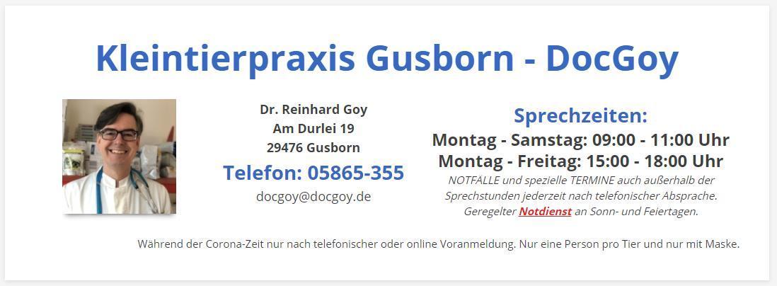 Tierarztpraxis Gusboen neue Seite